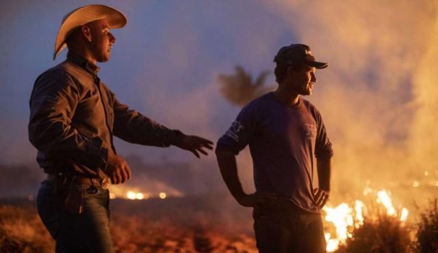 ¿Por qué arde una parte de la Amazonía?