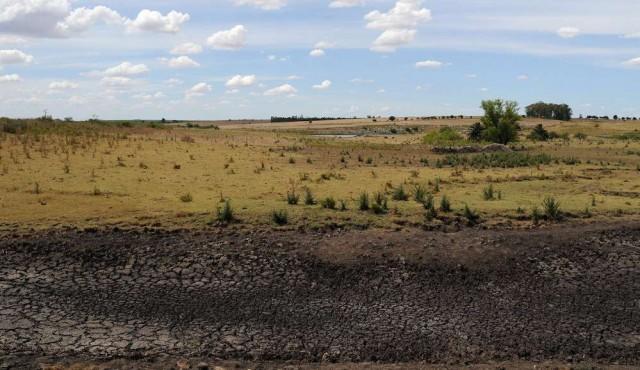 Gobierno amplía el área declarada bajo emergencia agropecuaria