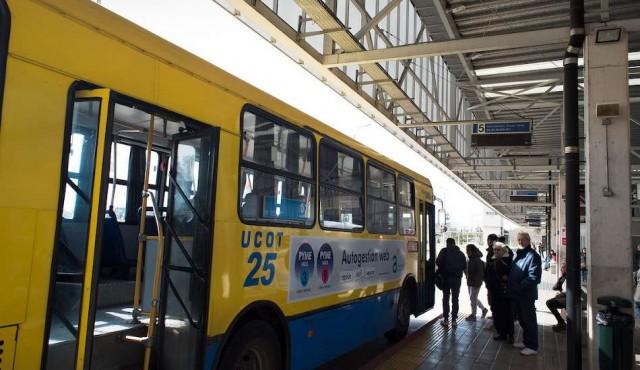 Paran cooperativas del transporte por crisis en el sector