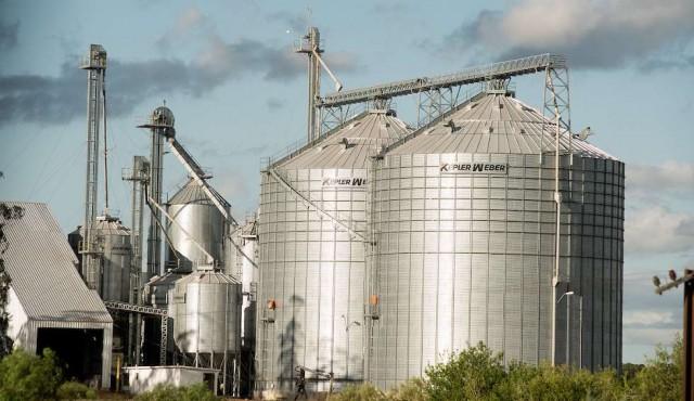 El arroz destaca en un contexto de fuerte caída de las exportaciones