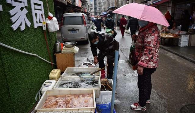 OMS pide suspender la venta de mamíferos salvajes vivos en mercados por riesgos sanitarios