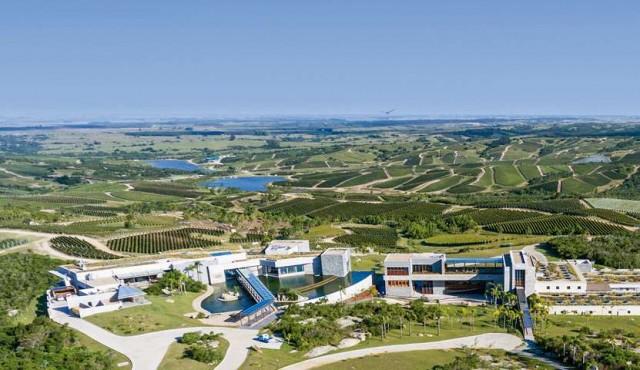 Bodega uruguaya vuelve a ubicarse entre las 10 mejores del mundo