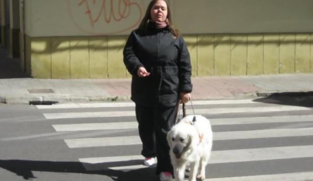 Ciegos uruguayos viajan en busca de sus perros guías