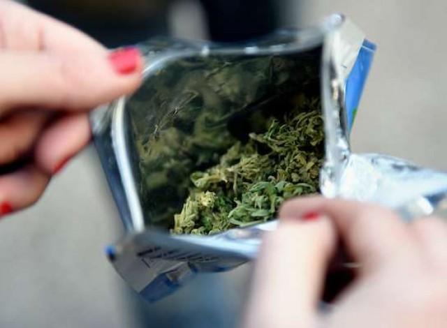 Portal 180 - Por qué el IRCCA estima que cannabis legal llega a la mitad del total de usuarios de marihuana