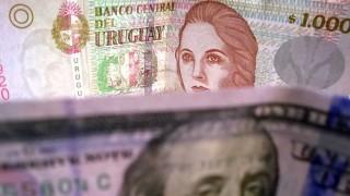 Darwin llamó a creer en el peso uruguayo y dio consejos económicos - Columna de Darwin - DelSol 99.5 FM