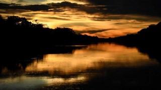 ¿Qué tres cosas hacen por el medio ambiente?  - Sobremesa - DelSol 99.5 FM