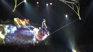 Ovo del Cirque Du Soleil: el elenco titular en Uruguay y las 20 nacionalidades - Informes - DelSol 99.5 FM