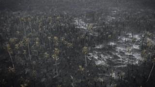 """Qué pasa en la Amazonia y qué pasa con """"Guido Manini Wilson"""" - NTN Concentrado - DelSol 99.5 FM"""