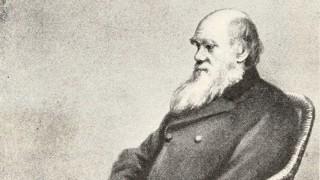La vida de Charles Darwin - Segmento dispositivo - DelSol 99.5 FM