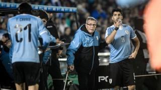 Encuesta: ¿Luis Suárez o el Maestro Tabárez? - Sobremesa - DelSol 99.5 FM