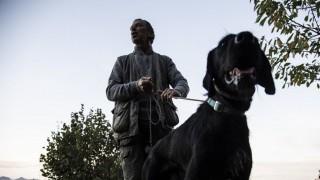 Le compré ración a un amigo y el perro se me murió: ¿qué pasa con esa amistad? - Sobremesa - DelSol 99.5 FM