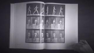 Eadweard Muybridge: el fotógrafo precursor del cine - Leo Barizzoni - DelSol 99.5 FM