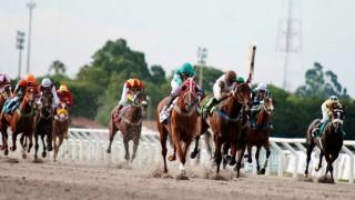 Turf en Uruguay: el primer retorno deportivo en tiempos de Coronavirus - Entrevistas - DelSol 99.5 FM