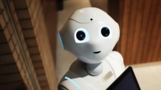 Un robot, un ministro: la equidad en la era de la inteligencia artificial - Cociente animal - DelSol 99.5 FM