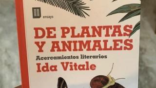 Ida sobre los animales - Un cacho de cultura - DelSol 99.5 FM