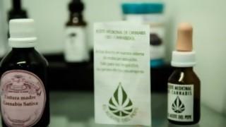 ¿Por qué no avanzamos más en el cannabis medicinal?  - Entrevista central - DelSol 99.5 FM
