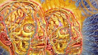 Glosolalia, populismo y virusplanismo - Entrada en calor - DelSol 99.5 FM