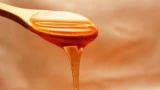 La miel de la vida - Al Plato - DelSol 99.5 FM