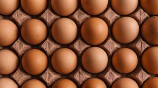 Los huevos: composición, conservación, manipulación - Leticia Cicero - DelSol 99.5 FM