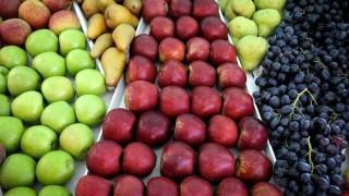 El descubrimiento de Darwin respecto al covicho y el mito del azúcar de las frutas - NTN Concentrado - DelSol 99.5 FM