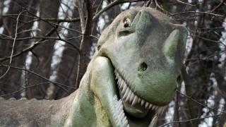 Dinosaurios carnívoros y los veganos que no tienen lugar en Uruguay - Columna de Darwin - DelSol 99.5 FM
