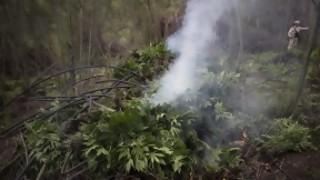 Nos vino todo el humo - La Charla - DelSol 99.5 FM