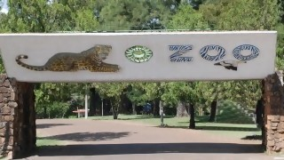 """Villalba: """"muchas especies se han salvado de la extinción por los zoológicos"""" - Entrevista central - DelSol 99.5 FM"""