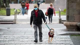 Las intervenciones artísticas de la IM y un decreto que exige que los perros sean conducidos con correa y collar - NTN Concentrado - DelSol 99.5 FM