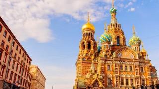 Historias felinas en Rusia - ¡Qué animal! - DelSol 99.5 FM