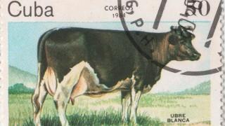 Fidel Castro y su vaca anti imperialista - La Receta Dispersa - DelSol 99.5 FM