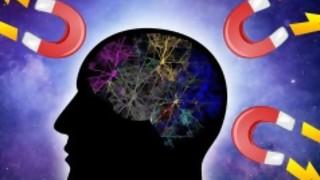 La ley de atracción - Psicología alegre - DelSol 99.5 FM