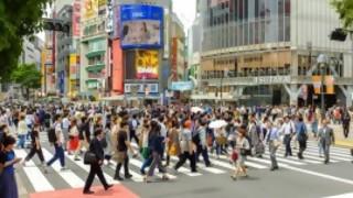 ¿Las ciudades modernas deberían estar pensadas para los peatones o para el tránsito dinámico? - Sobremesa - DelSol 99.5 FM