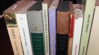 La literatura esmeralda - El guardian de los libros - DelSol 99.5 FM