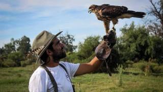 Aves rapaces en las escuelas para derribar miedos y mitos - Entrevistas - DelSol 99.5 FM