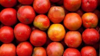 ¿Qué verduras y/o legumbres son los galanes? - Sobremesa - DelSol 99.5 FM