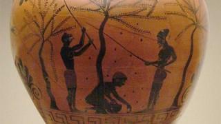 Los parásitos griegos - Segmento dispositivo - DelSol 99.5 FM