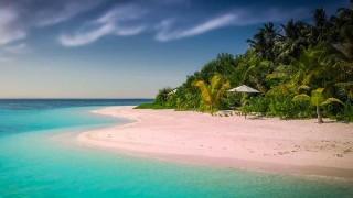 En defensa de los paraísos fiscales - Cociente animal - DelSol 99.5 FM