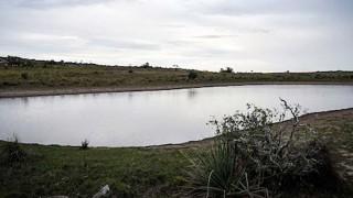 Al banquillo: ¿el campo contra el agua? - Al banquillo  - DelSol 99.5 FM