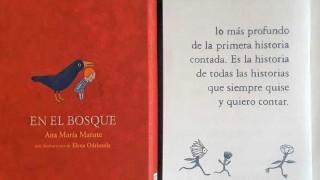 """""""Cuando la utilidad toma la escena, el libro se vuelve un fármaco"""" - Virginia Mortola - DelSol 99.5 FM"""