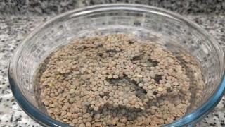 Qué son los antinutrientes y cómo tratarlos - Leticia Cicero - DelSol 99.5 FM
