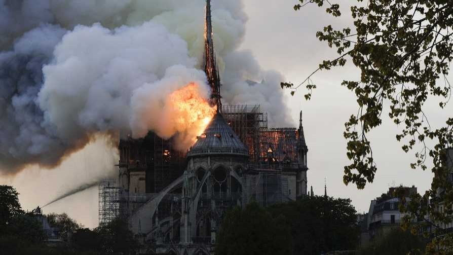 El incendio de Notre Dame y sus responsables, según Darwin - Columna de Darwin - No Toquen Nada | DelSol 99.5 FM