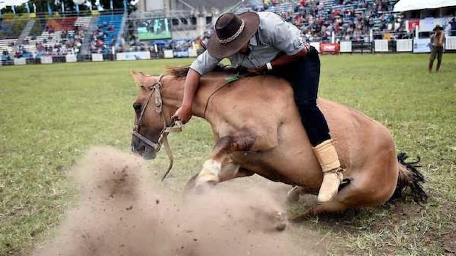 Evalúan cambiar Criollas ante muerte de un segundo caballo - Titulares y suplentes - La Mesa de los Galanes | DelSol 99.5 FM
