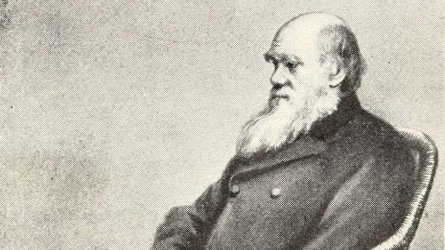 La vida de Charles Darwin - Segmento dispositivo - La Venganza sera terrible | DelSol 99.5 FM