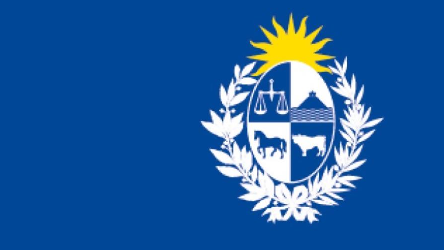 Análisis de la nueva imagen de Presidencia, ¿funciona el escudo nacional como logo? - Audios - Facil Desviarse   DelSol 99.5 FM