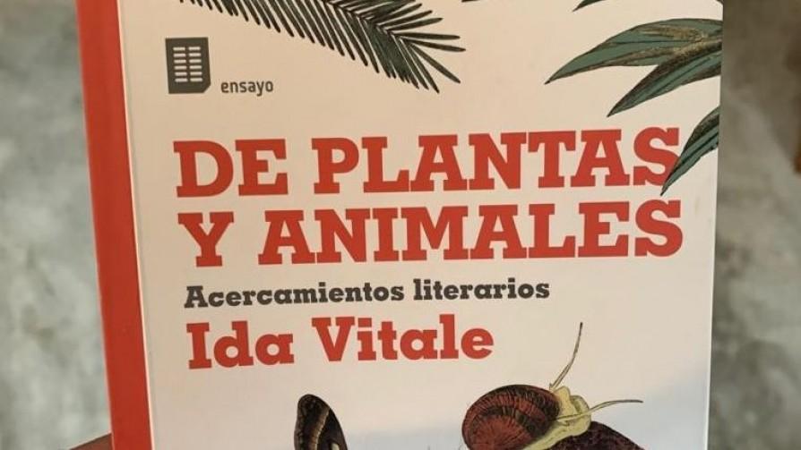 Ida sobre los animales - Un cacho de cultura - Quién te Dice | DelSol 99.5 FM