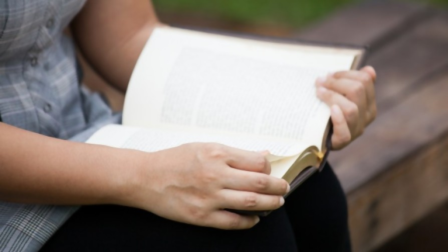 La Guardiana de los Libros  - El guardian de los libros - Facil Desviarse   DelSol 99.5 FM