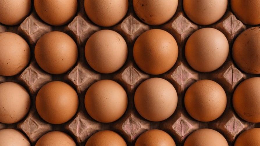 Los huevos: composición, conservación, manipulación - Leticia Cicero - No Toquen Nada | DelSol 99.5 FM