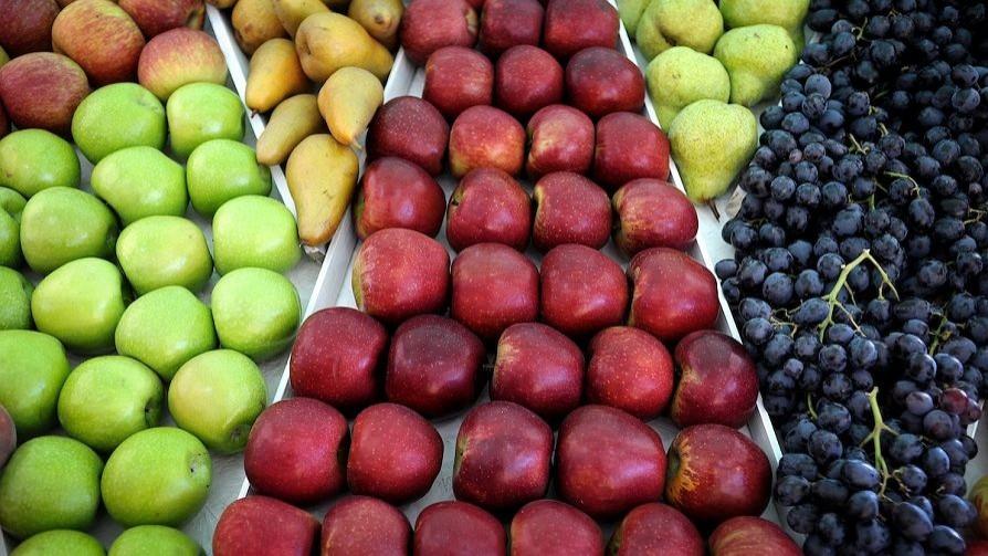 El descubrimiento de Darwin respecto al covicho y el mito del azúcar de las frutas - NTN Concentrado - No Toquen Nada | DelSol 99.5 FM