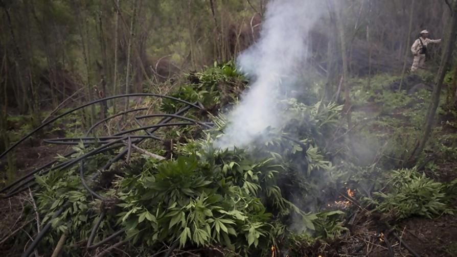 Nos vino todo el humo - La Charla - La Mesa de los Galanes | DelSol 99.5 FM