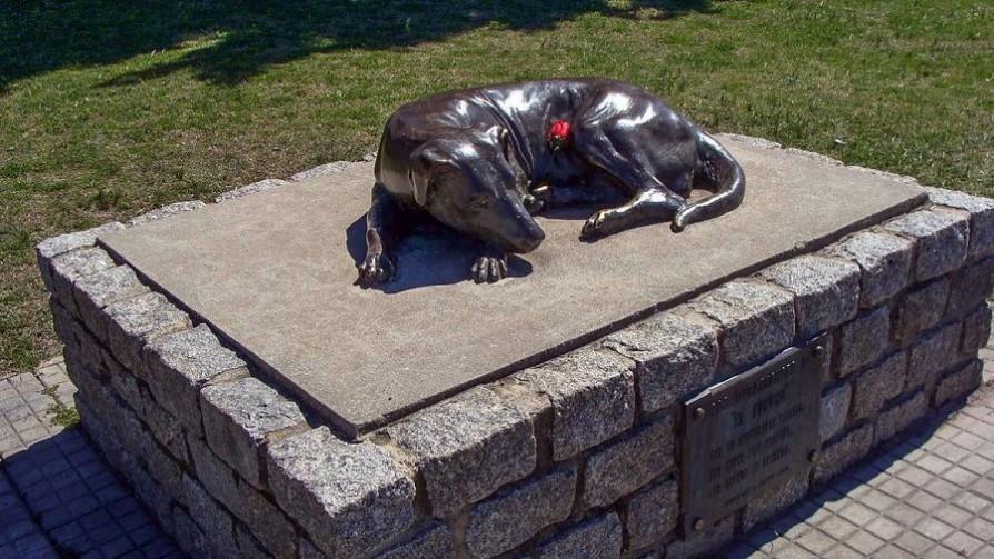 El Gaucho: la estatua que recuerda a un perro de nadie, pero de todos los duraznenses - ¡Qué animal! - Abran Cancha | DelSol 99.5 FM